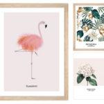 flamingo01plus